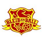 """Preisträger-Logo """"Bleib am Ball""""-Wappen, Zinnober e.V"""